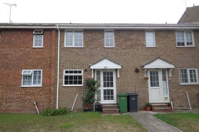 Thumbnail Terraced house to rent in Bexhill Road, St. Leonards-On-Sea
