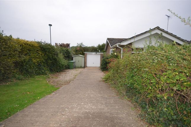 Property To Rent In Acle