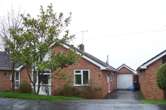 Thumbnail Bungalow to rent in Somerville Road, Sandford, Winscombe