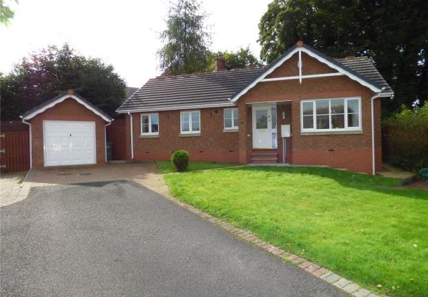 Thumbnail Detached bungalow for sale in Irthing Park, Brampton, Cumbria