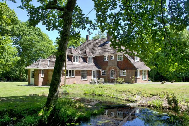 Thumbnail Detached house to rent in Castle Hill Lane, Burley, Ringwood