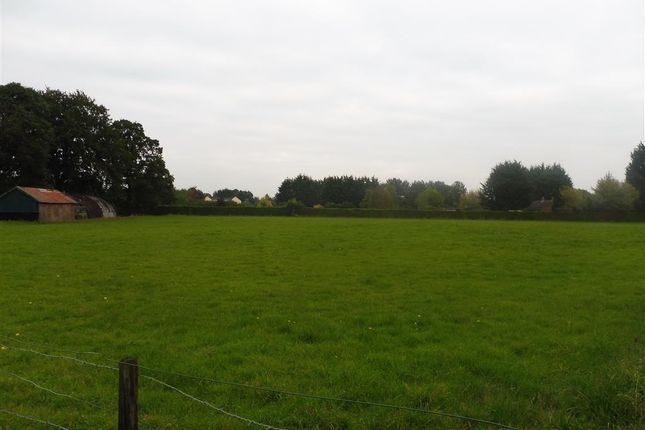 Thumbnail Land for sale in Scotts Lane, Brookville, Thetford