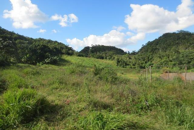 Land for sale in Hat Field, Manchester, Jamaica