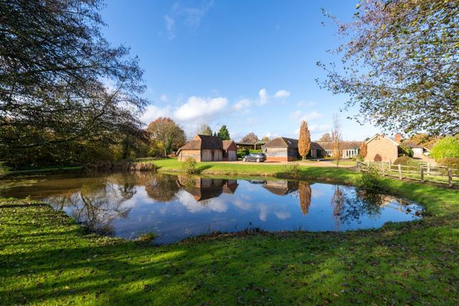 Thumbnail Detached house to rent in Norley Lane, Shamley Green, Guildford
