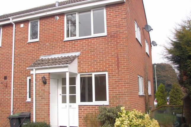 Thumbnail Property to rent in Spruce Avenue, Waterlooville