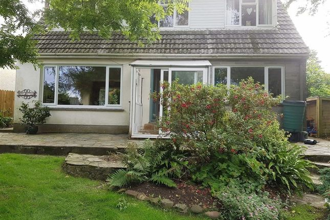 Thumbnail Detached house to rent in Bowden, Bude, Cornwall