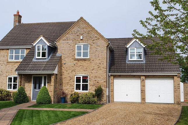 Thumbnail Detached house for sale in Isleham, Ely, Cambridgeshire