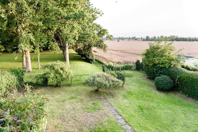 Thumbnail Detached house for sale in Arundel Road, Poling, West Sussex