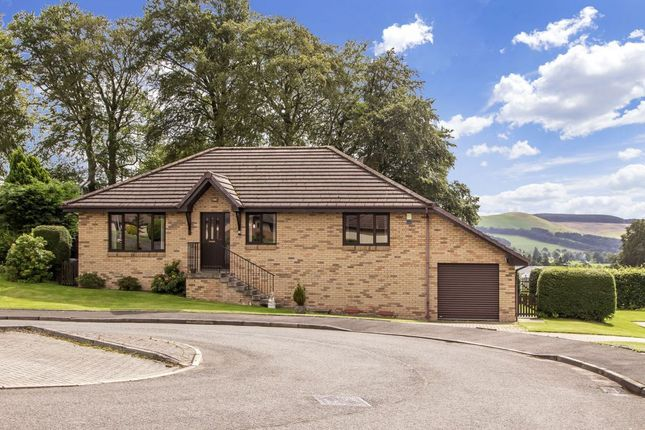 Thumbnail Detached bungalow for sale in 23 Colliehill Road, Biggar
