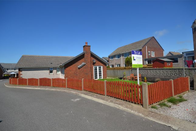 Thumbnail Detached bungalow to rent in Treetops, Bigrigg, Cumbria