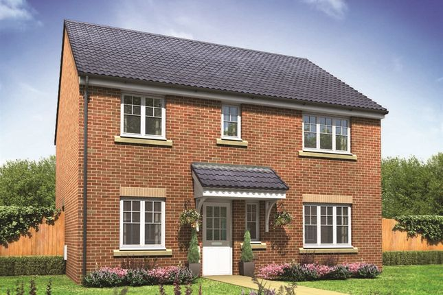 "Thumbnail Detached house for sale in ""The Marlborough"" at Cawston Road, Aylsham, Norwich"