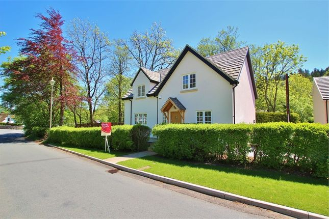 Thumbnail Detached house for sale in Draethen, Newport