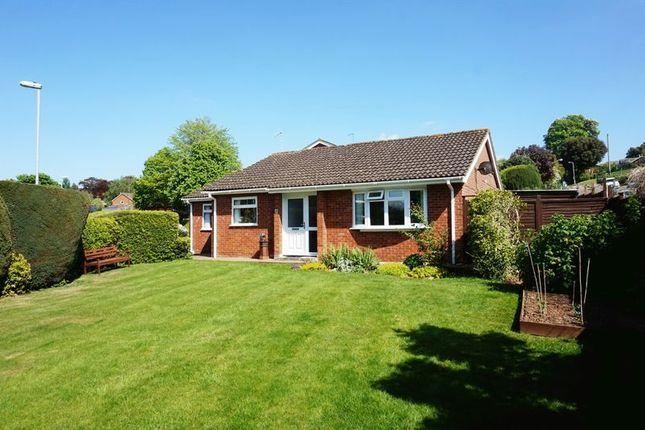 Thumbnail Detached bungalow for sale in Hoveland Drive, Taunton