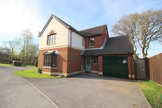 Thumbnail Detached house for sale in Hollyhock Drive, Brackla, Bridgend.