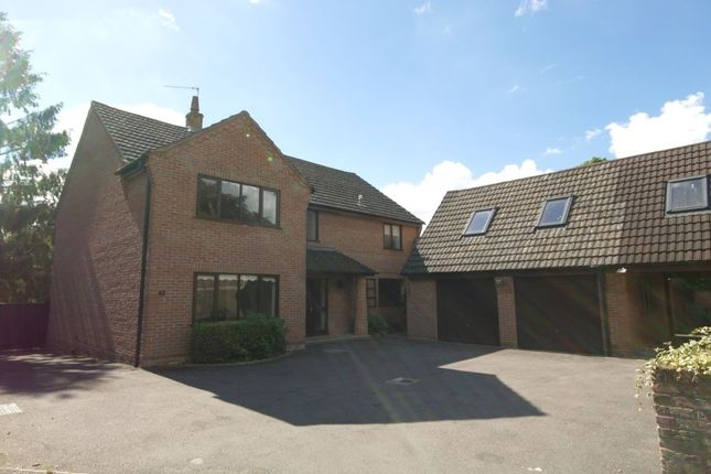 Thumbnail Detached house to rent in Orchard Drive Low Road, Hellesdon, Norwich