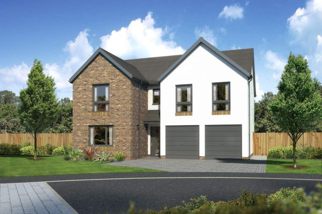 "Thumbnail Detached house for sale in ""Malborough"" at Countesswells Park Place, Aberdeen"