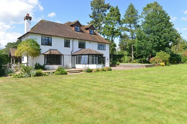 Thumbnail Detached house to rent in Chinthurst Lane, Shalford, Guildford