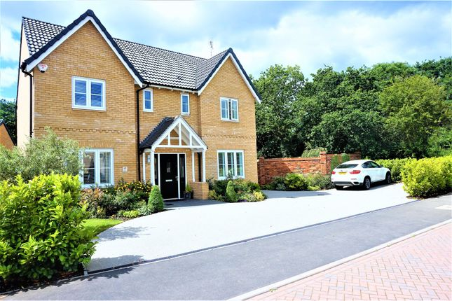 Thumbnail Detached house for sale in Oak Crescent, Wickford