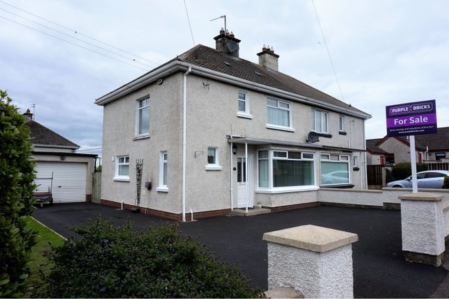 Thumbnail Semi-detached house for sale in Chestnut Grove, Ballymoney