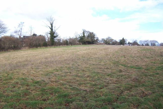 Land to rent in Willis Lane, Four Marks, Four Marks, Hampshire