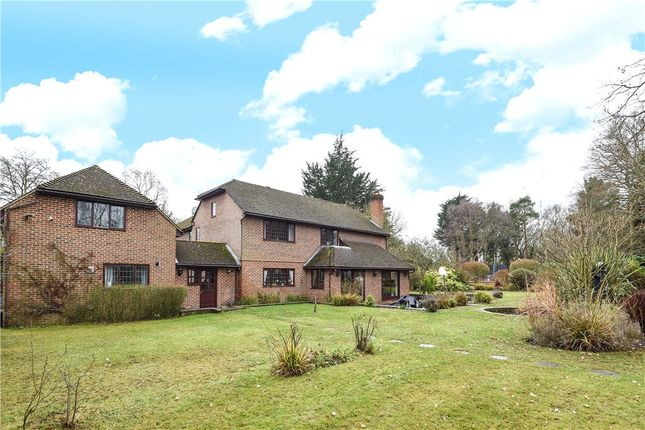 Thumbnail Detached house for sale in Sandy Lane, Wokingham, Berkshire