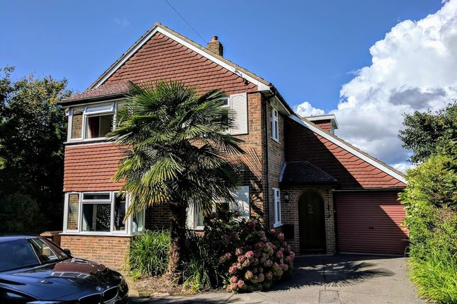 Thumbnail Detached house for sale in Church Street, Willingdon, Eastbourne