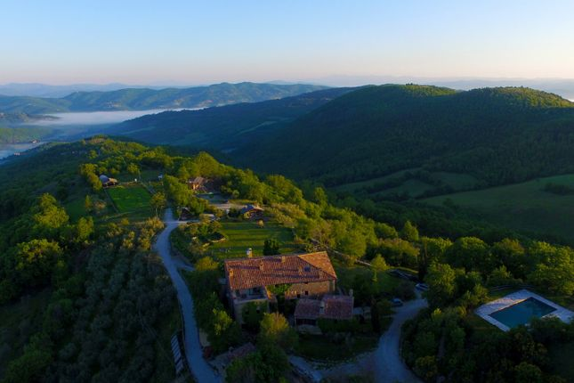 Thumbnail Farmhouse for sale in Località Monastevole, Umbertide, Perugia, Umbria, Italy