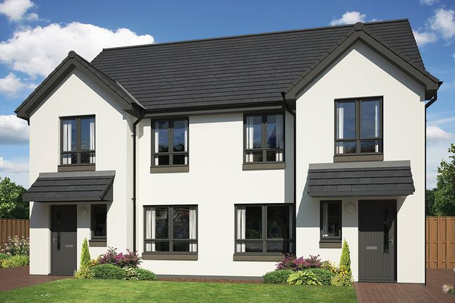 Thumbnail Semi-detached house for sale in Off Hamilton Road, Motherwell, Lanarkshire