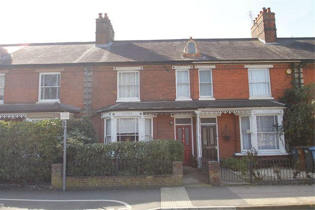 Thumbnail Terraced house for sale in Norwich Road, Ipswich, Suffolk