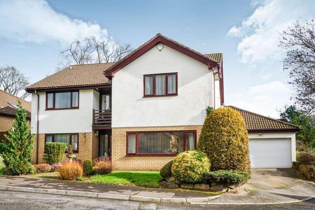 Thumbnail Detached house for sale in The Paddock, Lisvane