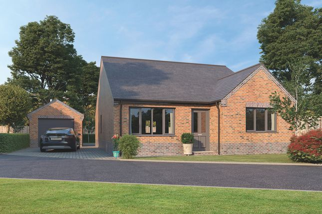 Thumbnail Detached bungalow for sale in The Sudbury, Scarsdale Green, Bolsover
