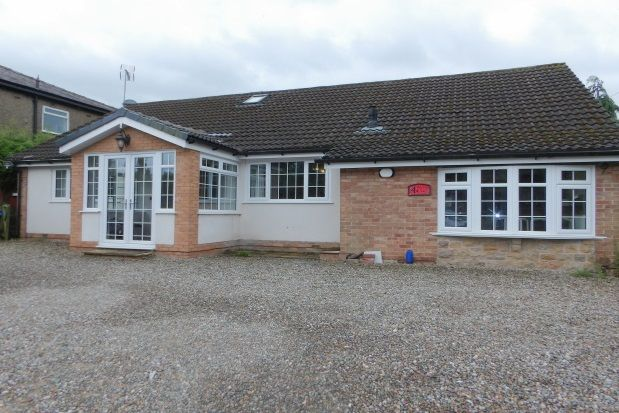Thumbnail Bungalow to rent in Frenchwood Knoll, Preston