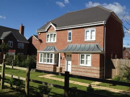 Thumbnail Detached house to rent in Dorset Crescent, Worting, Basingstoke