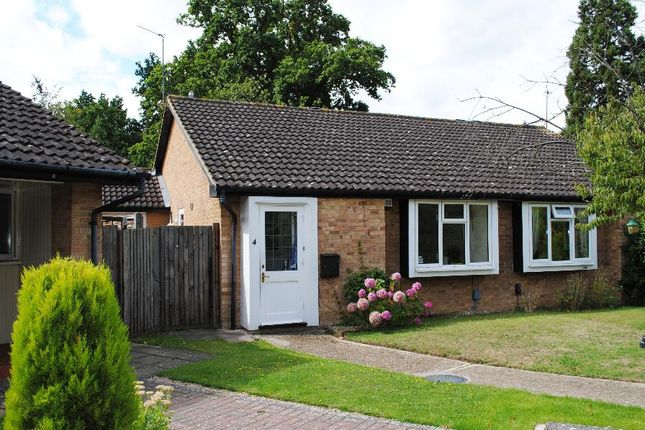 Thumbnail Semi-detached bungalow to rent in Milcombe Close, Woking