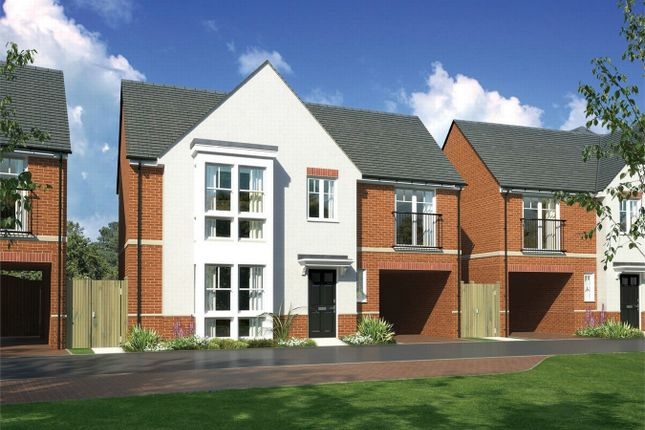 Thumbnail Detached house for sale in The Witcombe, Inland Homes At St John's, Chelmsford