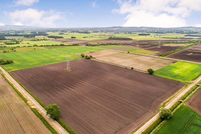 Thumbnail Land for sale in Moss Road, Croston, Leyland