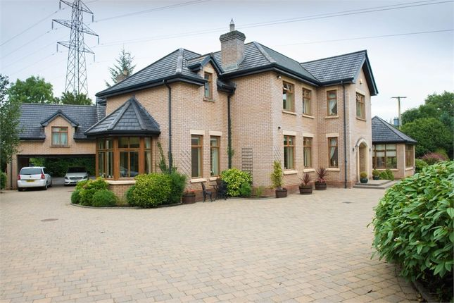 Thumbnail Detached house for sale in Mountsandel Road, Coleraine, County Londonderry