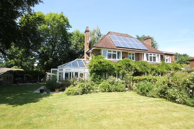 Thumbnail Detached house to rent in Beechway, Guildford