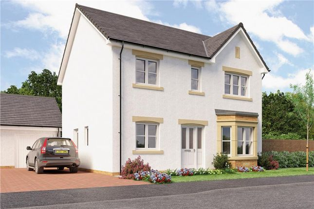 "Thumbnail Detached house for sale in ""Douglas"" at Red Deer Road, Cambuslang, Glasgow"