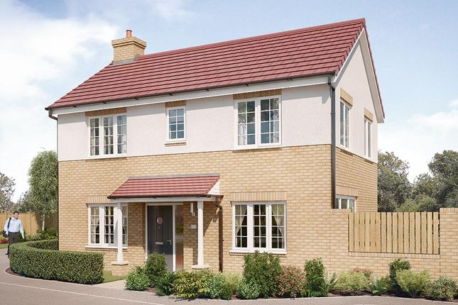 """Thumbnail Detached house for sale in """"The Dalton"""" at Chilton, Ferryhill"""