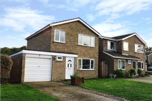 Thumbnail Detached house to rent in Selwyn Close, Newmarket