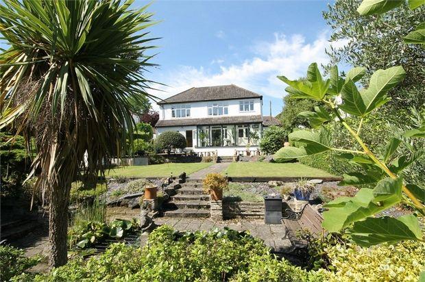 Thumbnail Detached house for sale in Mount Park, Carshalton, Surrey