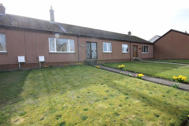 Thumbnail Terraced bungalow for sale in Paradise Row, Stotfield Road, Lossiemouth