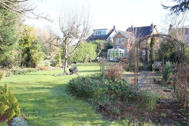 Thumbnail Detached house for sale in St Leonards Road, Chesham Bois, Buckinghamshire