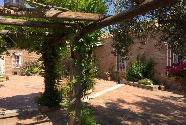Img_0280 of Spain, Málaga, Alhaurín De La Torre