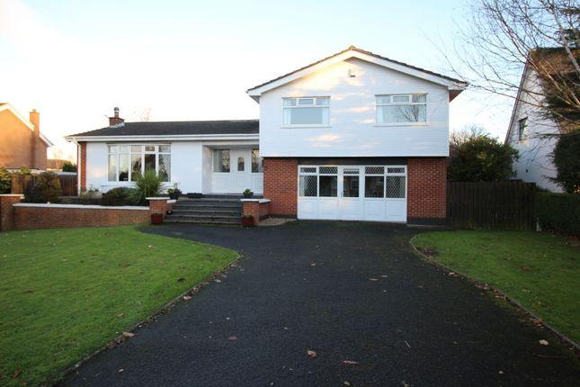 Thumbnail Detached house for sale in Ballycrochan Road, Bangor