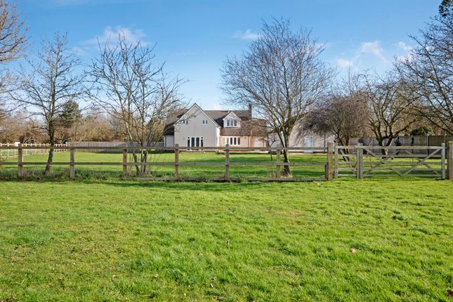 Thumbnail Detached house for sale in Salmons Lane, Coggeshall, Colchester