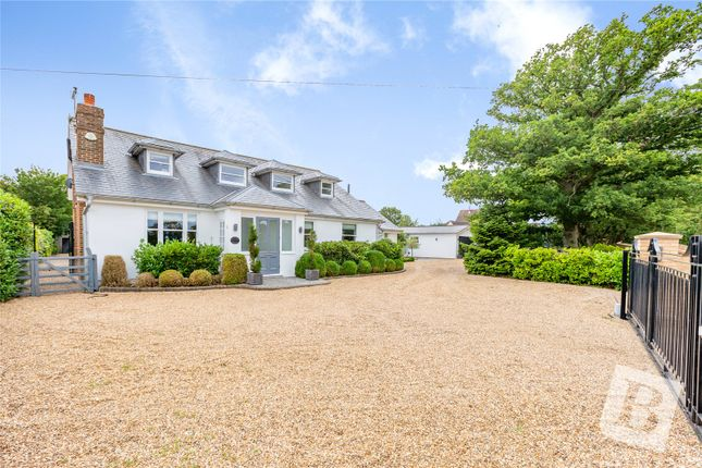Thumbnail Detached house for sale in Toot Hill Road, Ongar, Essex