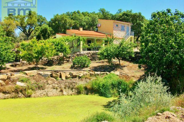 Finca for sale in Freixial E Juncal Do Campo, Castelo Branco, Castelo Branco