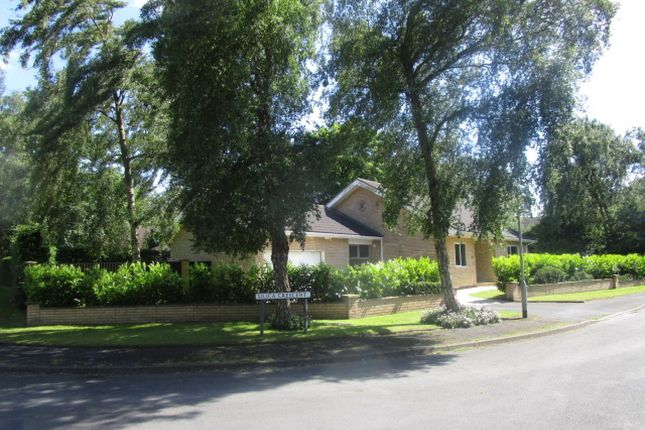 Thumbnail Bungalow for sale in Silica Crescent, Scunthorpe, North Lincolnshire